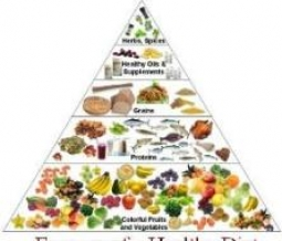 Essence of a Healthy Diet
